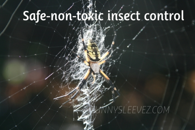 SAFE BLOG insect killer diatomaceous earth